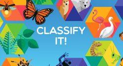 classifyitcrop.jpg__500x300_q85_crop_upscale[1]